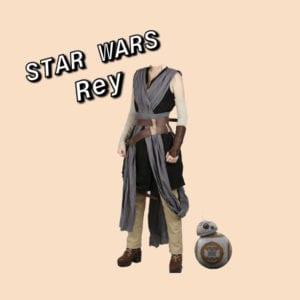 Rey As Seen In Star Wars The Last Jedi
