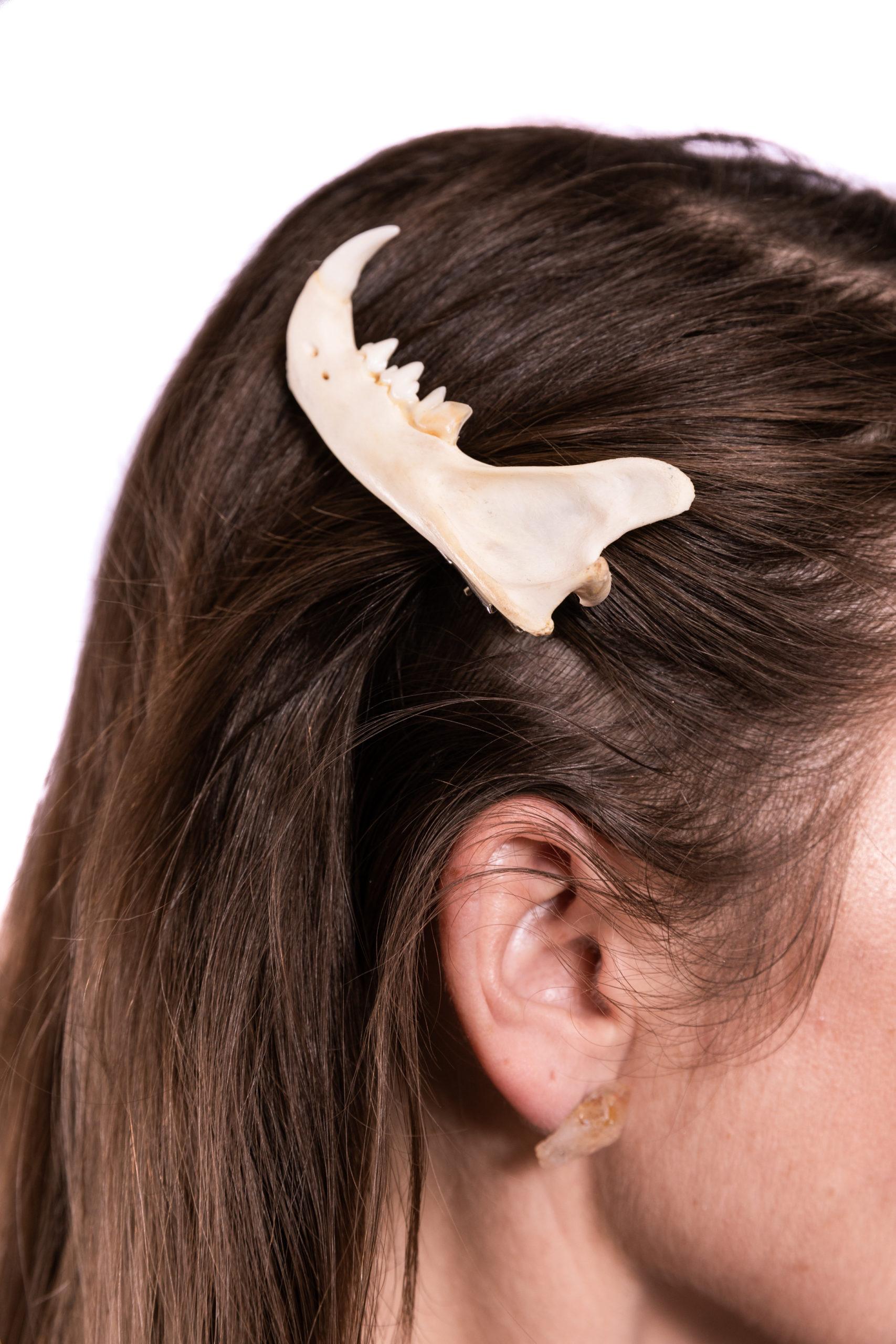 Bone hair clips