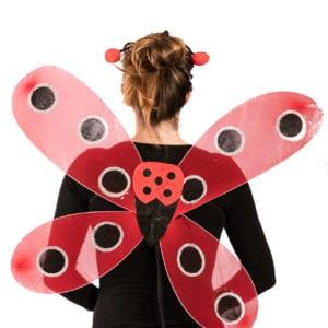 lady bug wings