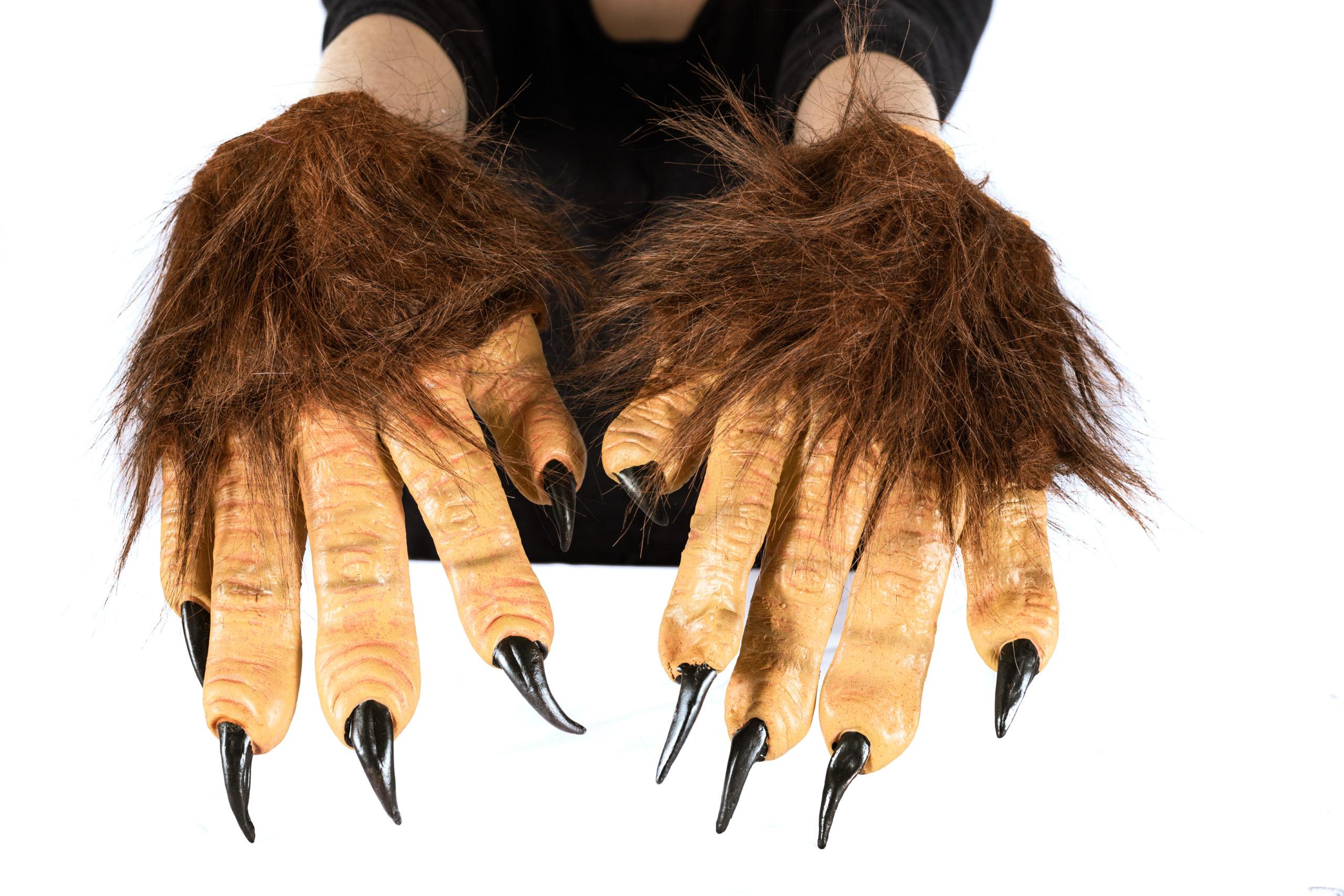 Monster hand gloves